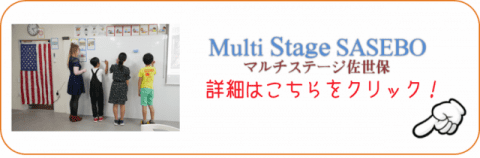 Multi Stage SASEBO